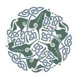 Keltisch ornament met paarden Stock Afbeeldingen