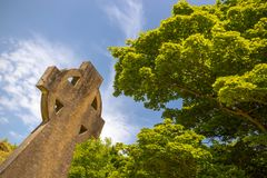 Keltische dwarsgrafzerk onder een groen kerkhof van de boom zonnig dag stock fotografie