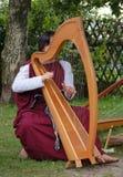 Keltische Harp royalty-vrije stock afbeeldingen