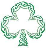 Keltischer Knoten-Shamrock Stockfotografie
