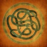 Keltisk fnuren för orm Royaltyfri Fotografi