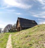Keltisk koja, Havranok Skansen, Slovakien royaltyfria foton