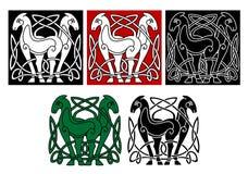 Keltiska hästar Royaltyfri Fotografi