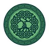 Keltiskt träd av liv Royaltyfria Bilder