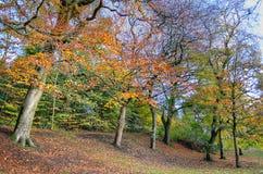 Kelvingrove Park - Glasgow, Scotland Royalty Free Stock Images