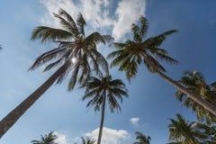 Kem Beach på den Phu Quoc ön, Vietnam Royaltyfri Fotografi