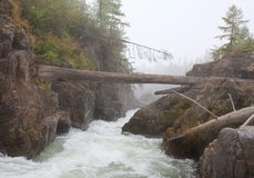Kema flod 5 Arkivbilder