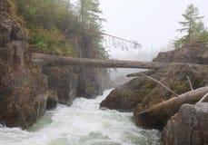 Kema rzeka 5 Obrazy Stock