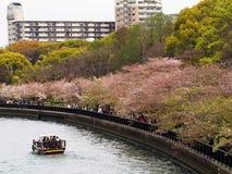 Kema Sakuranomiya fotografia stock