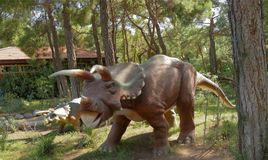 Kemer;Turkey-August 14; 2017: Triceratops Family -Late Cretaceou Royalty Free Stock Photography