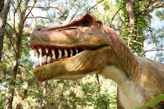 Tyrannosaurus rex-Late Cretaceous /150-65 million years ago. In Royalty Free Stock Photos