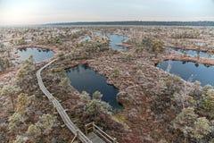 Kemeri国家公园 免版税库存图片