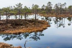 Kemeri inonde le parc national photo stock