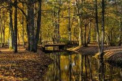 Kemeri krajobrazu park, Latvia fotografia stock