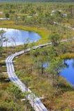 Kemeri National Park Royalty Free Stock Photo