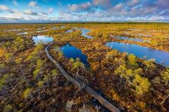 Kemeri-Sumpflandschaft stockfotografie