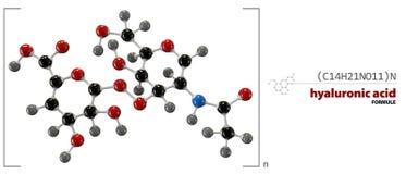 Kemisk formel för Hyaluronic syra, molekylstruktur, medicinsk illustration Arkivfoton