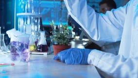 Kemist som gör prov i ett laboratorium arkivbild