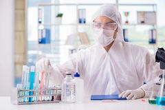 Kemisten som arbetar i labbet royaltyfri bild