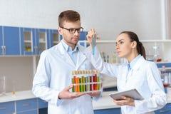Kemister i vita lag som kontrollerar provröret med agens i labb arkivfoto