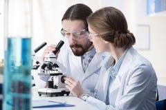 Kemister som arbetar med mikroskopet royaltyfri foto
