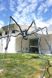 Kemper Museum Spider. This is a closeup image of Louise Bourgeois 1996 Spider sculpture on the front lawn of the Kemper Museum of Contemporary Art in Kansas City Stock Photos