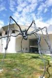 Kemper muzeum pająk Zdjęcia Stock