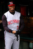 Ken Griffey Jr. Cincinnati Reds Stock Photo
