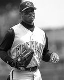 Ken Griffey Jr , Cincinnati Reds Photo stock