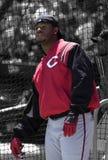 Ken Griffey Jr Cincinnati Reds. Ken Griffey Jr of the Cincinnati Reds waiting his turn at the batting cage Royalty Free Stock Image