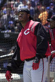 Ken Griffey Jr of the Cincinnati Reds Stock Photo