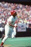 Ken Griffey, Sr. Cincinnati Reds star Ken Griffey,Sr. (image taken from color slide royalty free stock photo