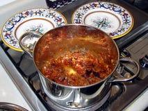 Ken's Stew. Homemade stew, fancy plates Stock Photography