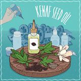 Kenaf seed oil used as grease lubricant. Plastic Oil Can of Kenaf seed oil and flower and seeds of Hibiscus cannabinus plant. Hand lubrication mechanism. Natural Royalty Free Stock Photos