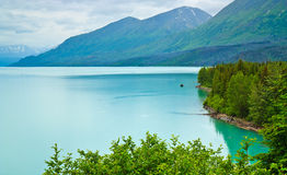 Kenai Lake, Alaska Royalty Free Stock Photo