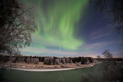 Kenai River Aurora Royalty Free Stock Image