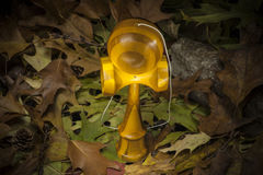 Kendama in an autumnal composition Stock Image
