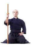 kendo самолет-истребителя Стоковые Изображения