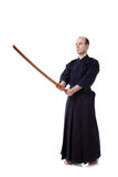 Kendo fighter Stock Image