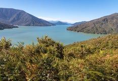 Kenepuru ljud i Marlborough ljud, södra ö, Nya Zeeland royaltyfri foto