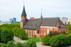 Kenigsberg Cathedral. Kaliningrad. Russia Royalty Free Stock Photos
