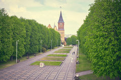 Kenigsberg Cathedral is main symbol of the city. Kaliningrad Stock Photo