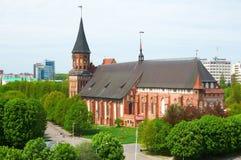 Kenigsberg domkyrka. Kaliningrad. Ryssland Royaltyfria Foton