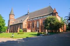 Kenigsberg domkyrka. Kaliningrad. Ryssland Royaltyfri Bild