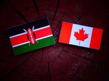 Kenijczyk flaga z kanadyjczyk flaga na drzewnym fiszorku odizolowywającym obrazy stock