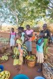 Kenijskie Giriama sprzedawania rodzinne owoc na drodze Zdjęcie Royalty Free