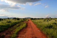Kenja Safari Zdjęcie Stock