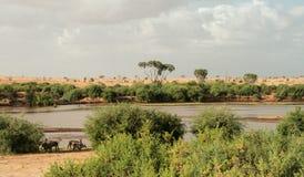 Kenja, Tsavo wschód park narodowy i rzeka - obraz stock