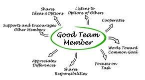 Kenmerken van Goed Team Member royalty-vrije illustratie