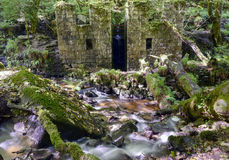 Kennal Vale. The old gunpowder works at Kennal Vale in Cornwall Stock Photos